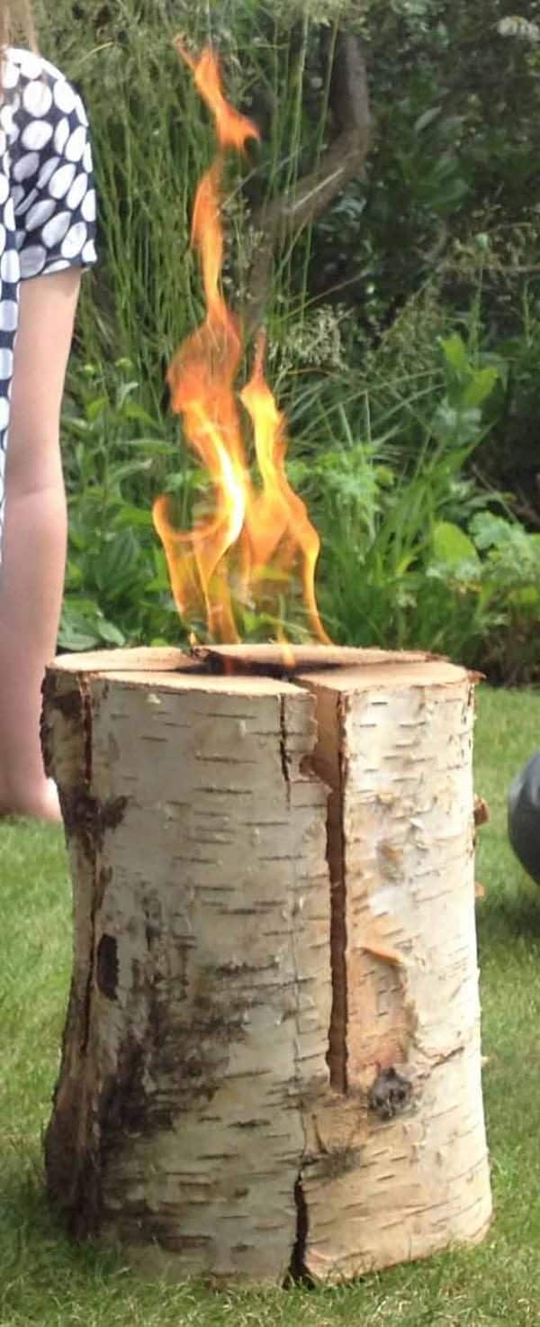 Swedish Torch - Birch (Large) - Pack of 3